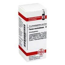 Produktbild Fucus vesiculosus D 3 Globuli