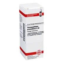 Produktbild Harpagophytum procumbens C 30 Dilution