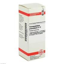 Produktbild Harpagophytum procumbens D 12 Dilution
