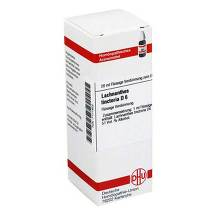 Produktbild Lachnanthes tinctoria D 6 Dilution