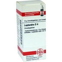 Leptandra D 4 Globuli