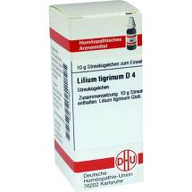 Produktbild Lilium tigrinum D 4 Globuli