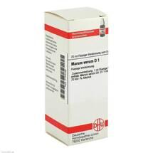 Produktbild Marum verum D 1 Dilution