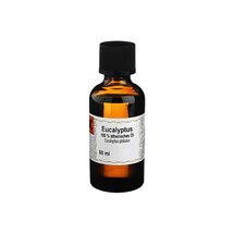 Produktbild Eucalyptus Öl 100% ätherisch