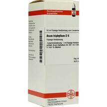 Arum triphyllum D 6 Dilution