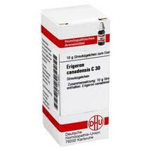 Produktbild Erigeron canadensis C 30 Globuli