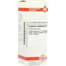 Leonurus Cardiaca D 1 Dilution