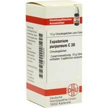 Eupatorium purpureum C 30 Gl