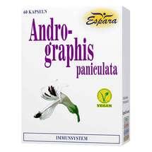 Produktbild Andrographis paniculata Kapseln