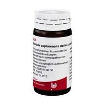 Produktbild Glandula suprarenalis Dextra c.