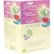 Produktbild Cool Cassis Salus Filterbeutel