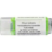 Produktbild Rhus toxicodendron C 30 Globuli