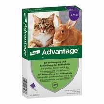 Advantage 80 mg für große Katzen+Zierkaninchen