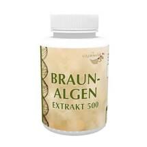 Produktbild Braunalgen Ektrakt 500 mg Kapseln