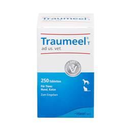 PZN 04055630 Tabletten, 250 St