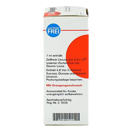 Colibiogen oral Lösung - 2