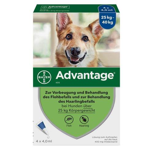Advantage Hund - 2