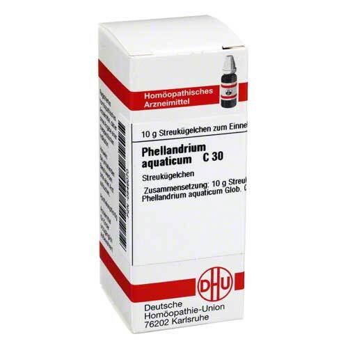 Phellandrium Aquaticum C 30 - 1