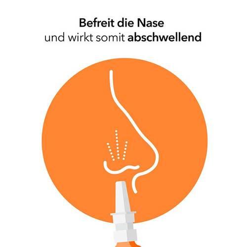 Nasenspray ratiopharm Erwachsene - 2