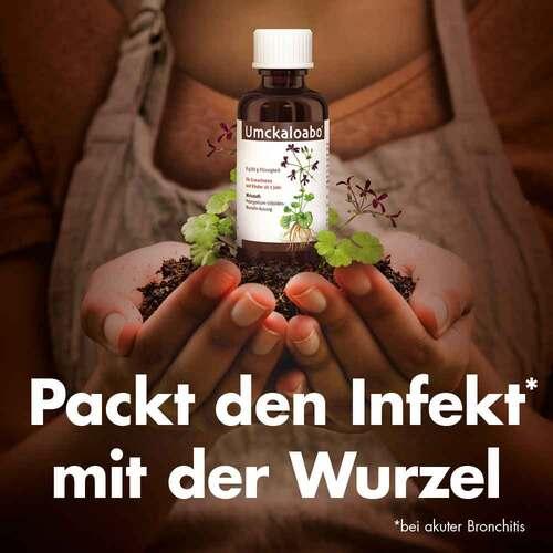 Umckaloabo Flüssigkeit - 3