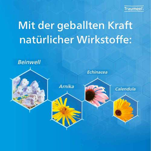 Traumeel S Creme - 4