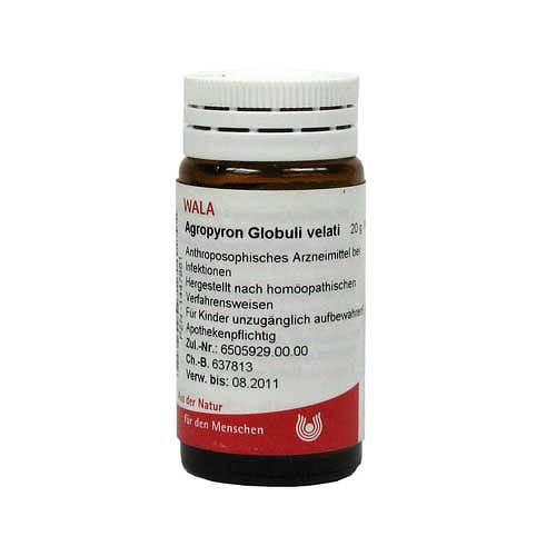 Agropyron Globuli Velati - 1