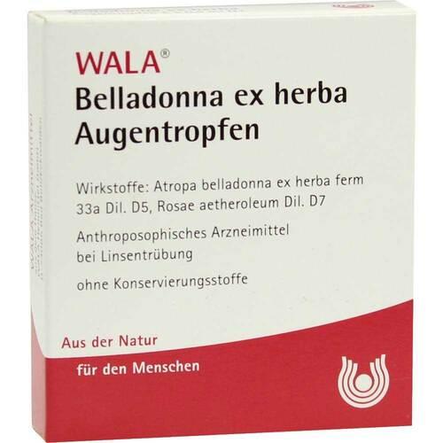 Belladonna ex Herba Augentro - 1