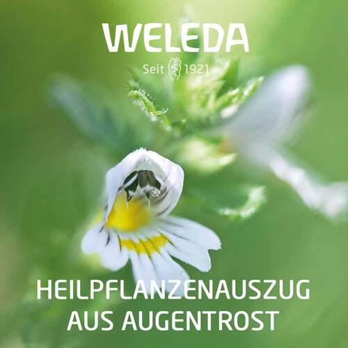 Euphrasia D3 Augentropfen - 3