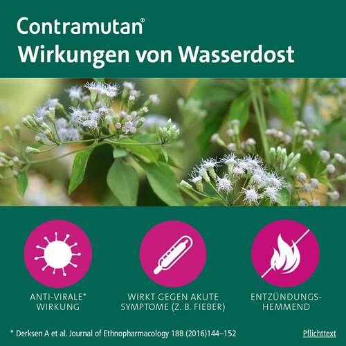 Contramutan Tropfen - 4