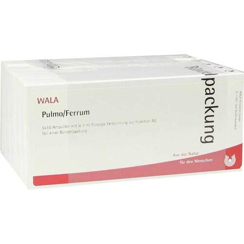 Pulmo / Ferrum Ampullen - 1