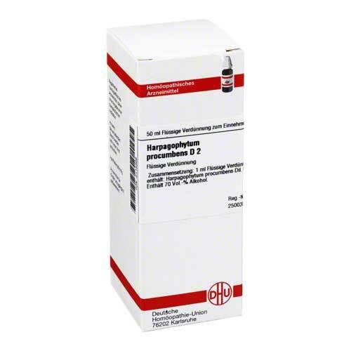 DHU Harpagophytum procumbens D 2 Dilution - 1