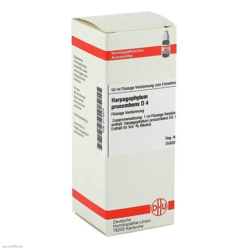Harpagophytum procumbens D 4 Dilution - 1