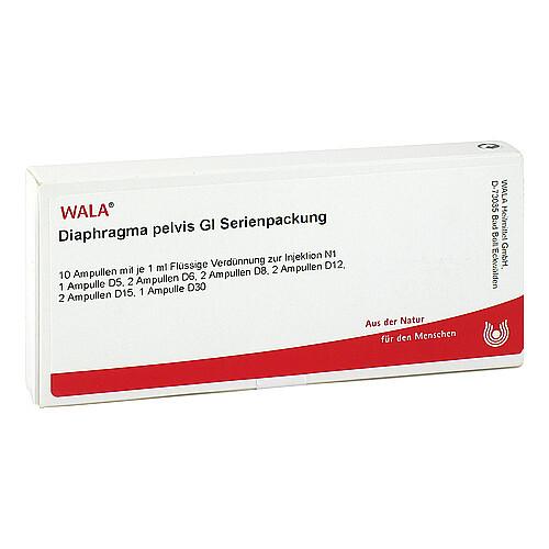 Diaphragma Pelvis GL Serienpackung Ampullen - 1