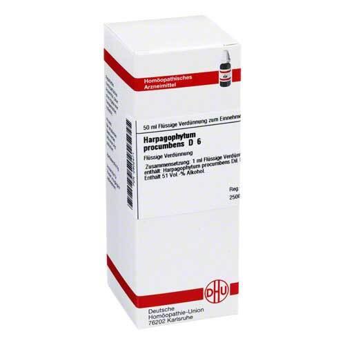 Harpagophytum procumbens D 6 Dilution - 1