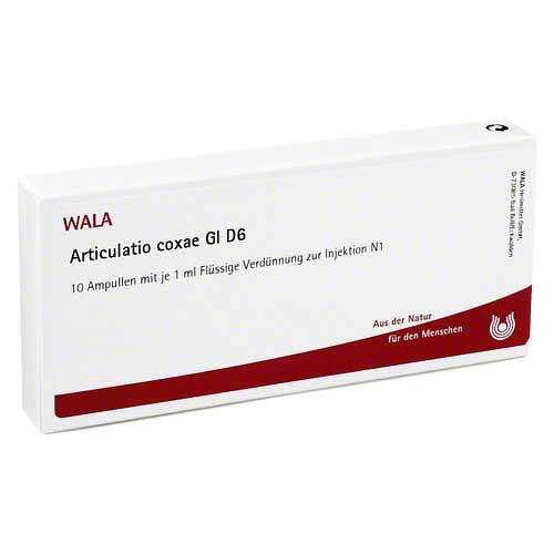 Articulatio Coxae GL D 6 Ampullen - 1