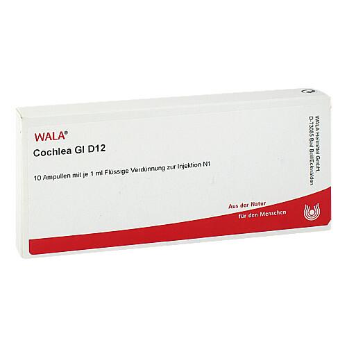 Cochlea GL D 12 Ampullen - 1