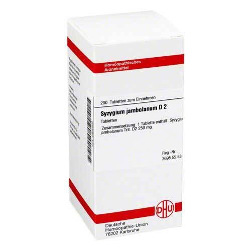 DHU Syzygium jambolanum D 2 Tabletten - 1