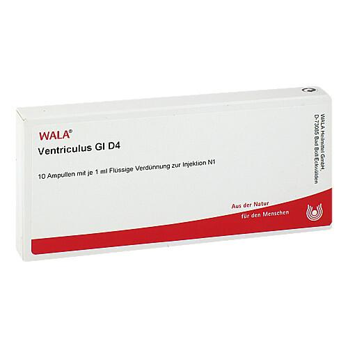 Ventriculus GL D 4 Ampullen - 1