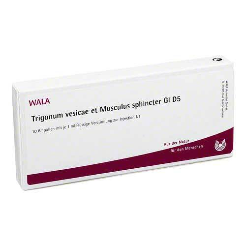 Trigonum VES.et Musc.sph.GL D 5 Ampullen - 1