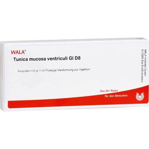 Tunica Mucosa VENTR. GL D 8 Ampullen - 1