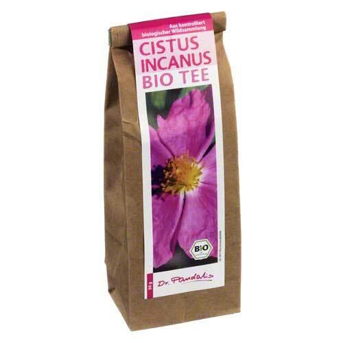 Cistus Incanus Bio Tee - 1