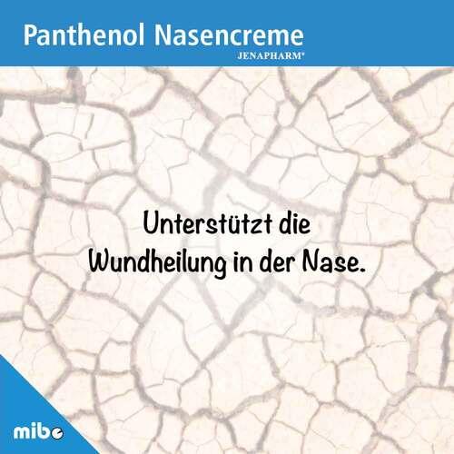 Panthenol Nasencreme Jenapharm - 2