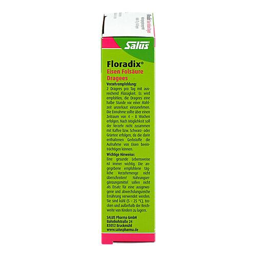 Floradix Eisen Folsäure Dragees - 2