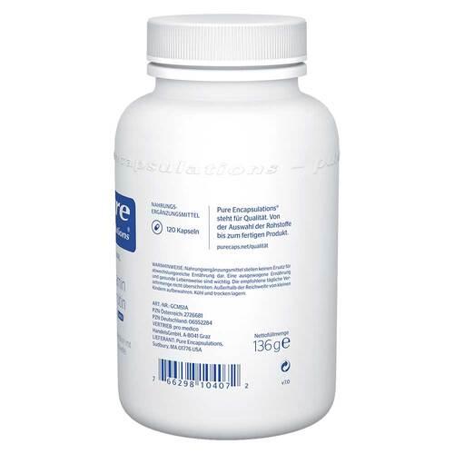 Pure Encapsulations Glucosamin+Chondroitin+MSM Kapseln - 2