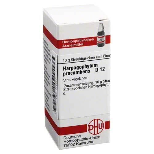 DHU Harpagophytum procumbens D 12 Globuli - 1