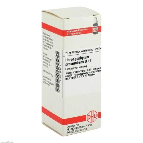 DHU Harpagophytum procumbens D 12 Dilution - 1