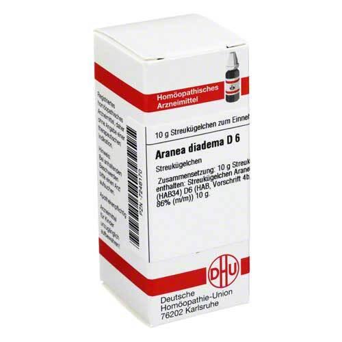 Aranea diadema D 6 Globuli - 1