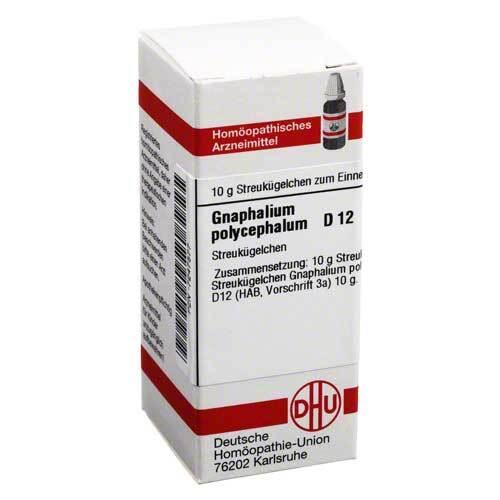 Gnaphalium polycephalum D 12 Gl - 1
