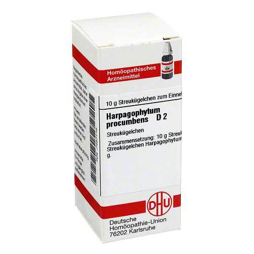 DHU Harpagophytum procumbens D 2 Globuli - 1