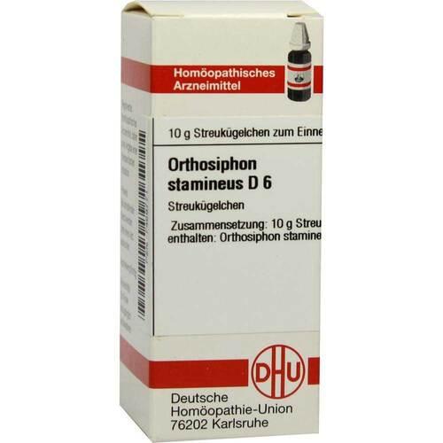 Orthosiphon Stamineus D 6 Gl - 1
